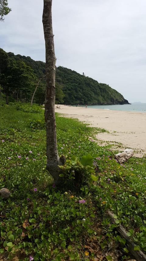 Bamboo Bay Beach Koh Lanta